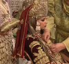 Algerian wedding ava